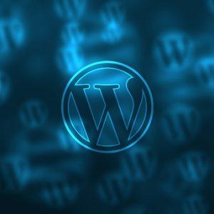 3 plugin indispensabili per WordPress